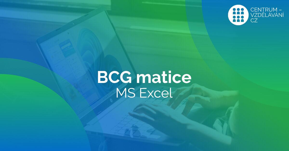 Tvorba BCG grafů v MS Excel